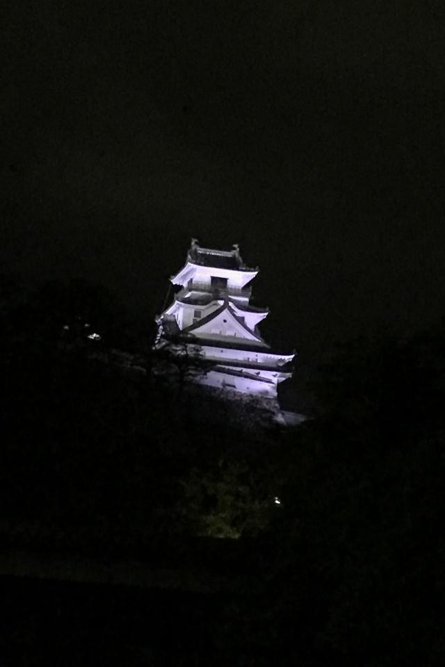 夜の高知城