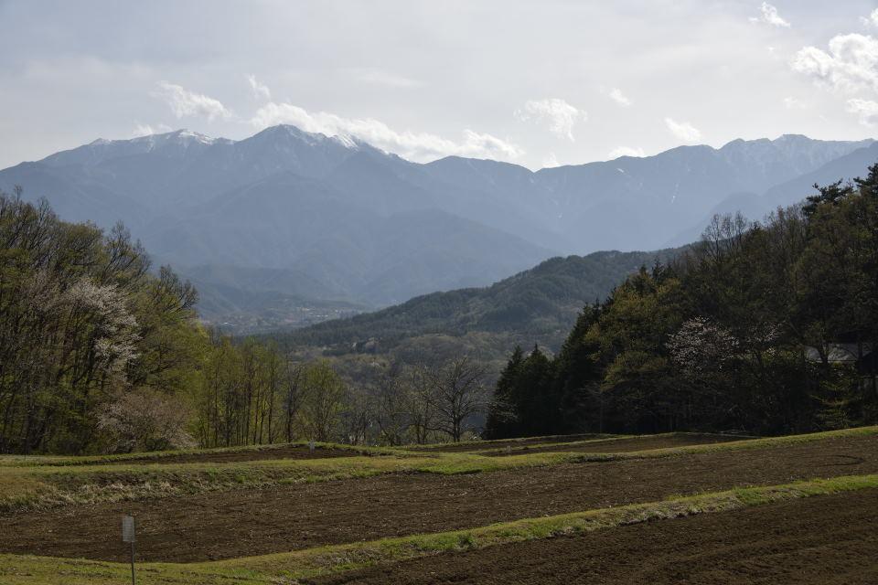 鳳凰三山~早川尾根