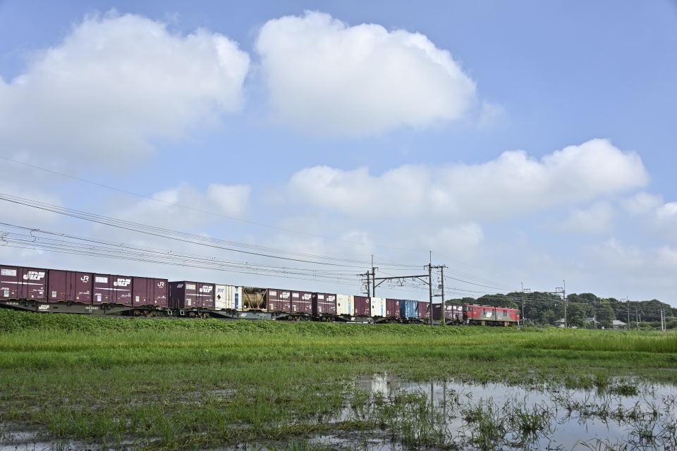 【08:44】下り:貨物列車